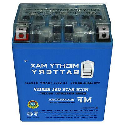 Mighty Max YTX14AHL 12Ah for 300CC